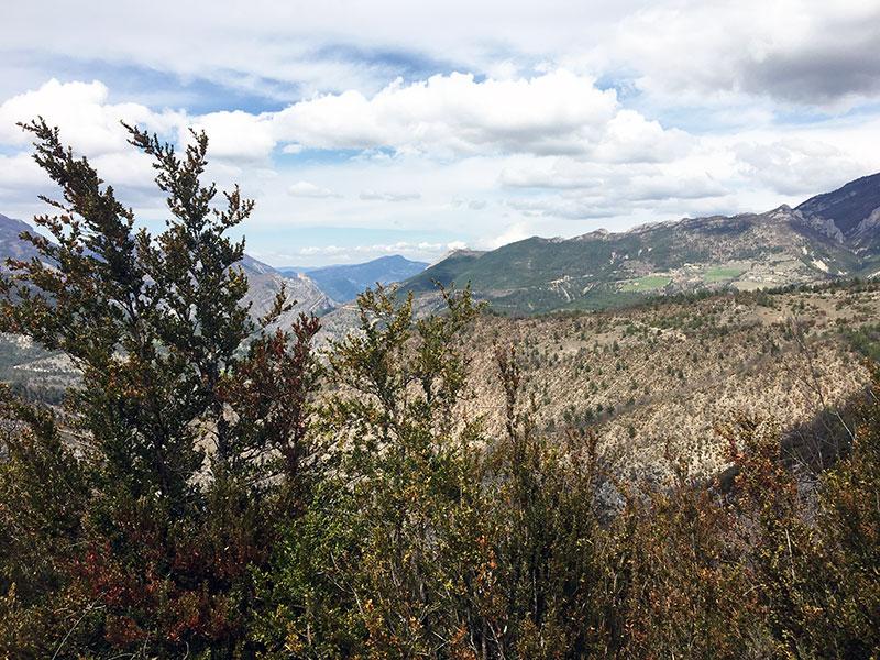 Gaec de Brette Vieille - paysage